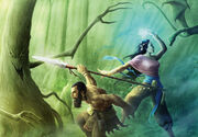 Aerilpar-Forest-Jason-A-Engle