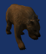 Neverwinter Nights 2 - Creatures - Brown Bear
