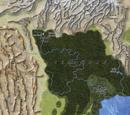 Sempadan Forest