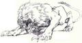 Dire lion.png