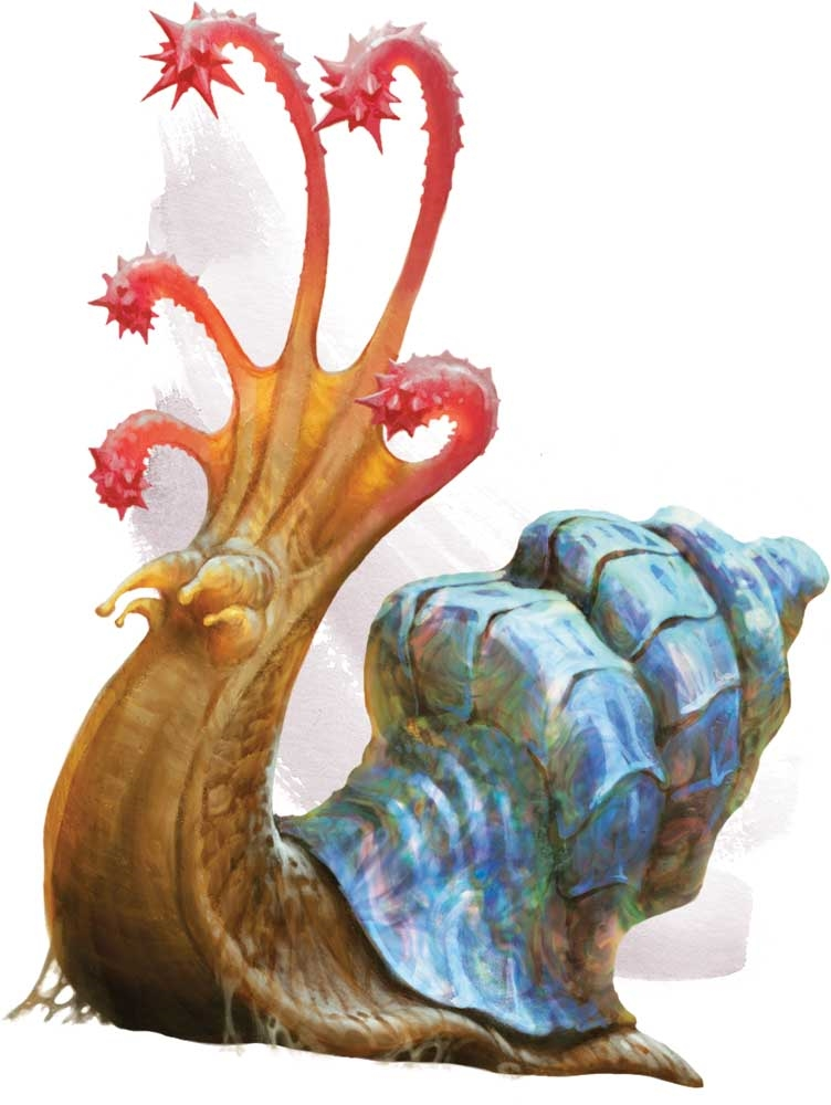 Flail snail | Forgotten Realms Wiki | FANDOM powered by Wikia