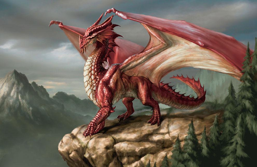 「dragon」の画像検索結果