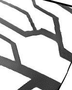 Linespic