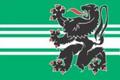 Flag of East Flanders.png