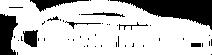 DTM Wiki Logo White