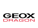 Dragon Racing