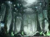 Wälder von Terokkar
