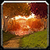 Icon eversongwoods