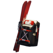 Alpine Accessories CAN - Back Bling - Fortnite