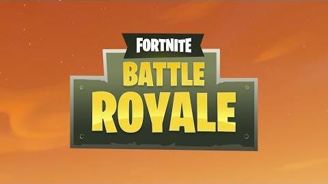 Fortnite Battle Royale - Busch