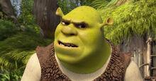Shrek-swamp-perplexed