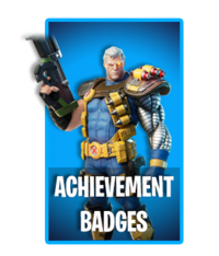 Achievement Badges - Cover - Fortnite