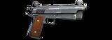 Icon SK Vigilante L