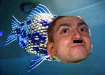 Henryfish