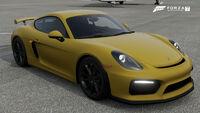 FM7 Porsche Cayman Front