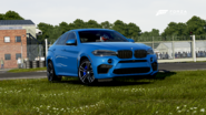 FM6 BMWX6M2015