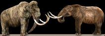 MammothVsMastodon