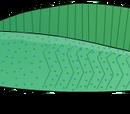 Evolutionary history of vertebrates