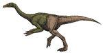 Hypothetical Deinocheirus