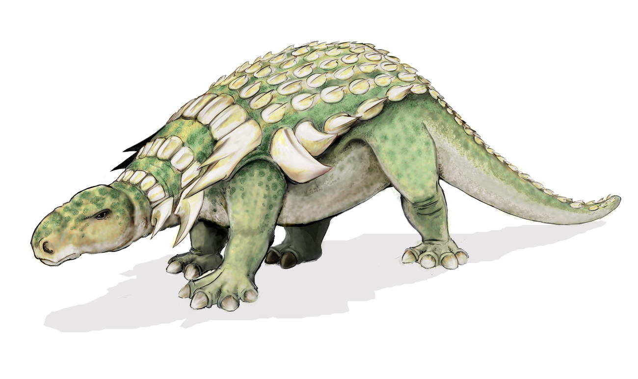 an evaluation of sources on historical geology about ankylosaurus dinosaurs Historical background: the search for the ether ba including such hypothetical phenomena as supermassive black holes at the centres of galaxies d the origin and development of the universe 1 the general theory of relativity aa1.