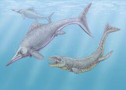 Caypullisaurus Dak1