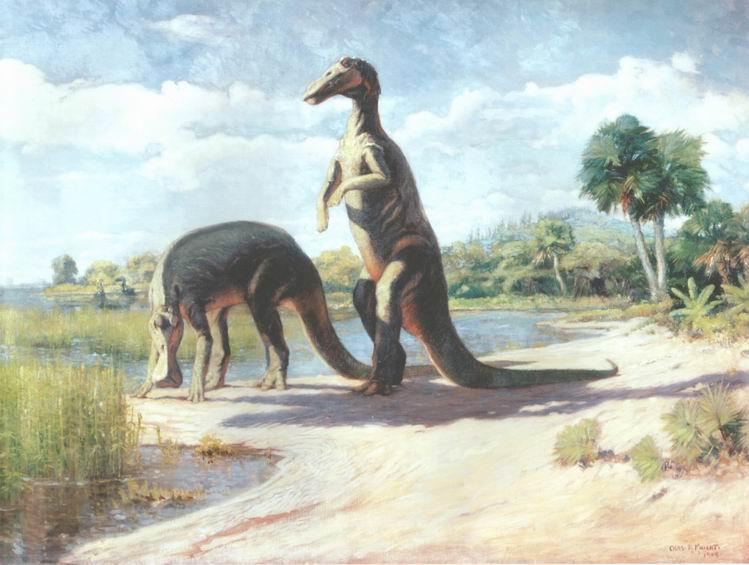 Trachodon | Fossil Wiki | FANDOM powered by Wikia