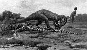 Allosaurus4