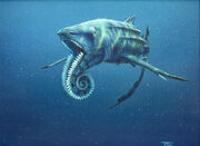 Tm helicoprion