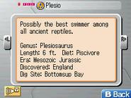 Plesio Museum FF