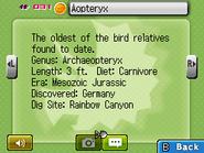 Aopteryx Fossilary FFC