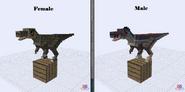 Velociraptor (new)