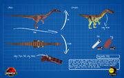 Jurassicraft blueprint segisaurus by jurassicraft-d8pi9g8