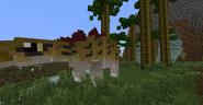 Stegosaurus with Paleoraphae