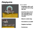 Platyhystrix preview