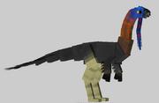 Gigantoraptor male