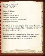 Nautilus DInoPedia