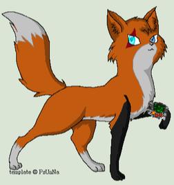 Foxoutcass