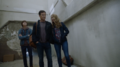TG-Caps-1x11-3-X-1-75-Andy-Reed-Caitlin.png