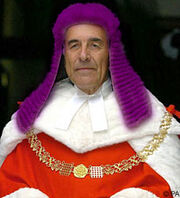 Flying purple judge