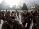 Armée Wookiee