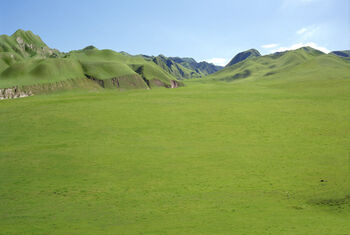 Grande Plaine Herbeuse