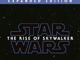 Star Wars épisode IX : L'Ascension de Skywalker (roman)
