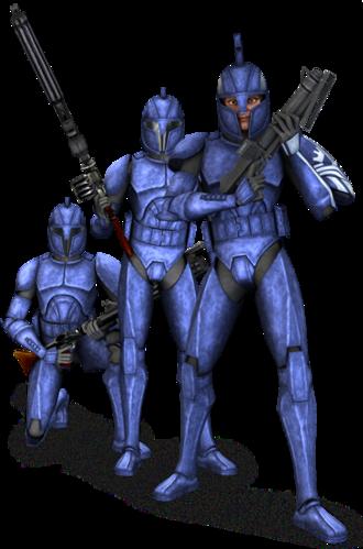 Commando du Sénat