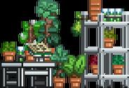 Botany Lab-0