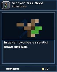 Bracken Tree Seed