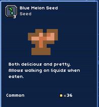 Blue melon seed