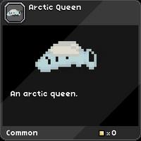 Arctic Queen