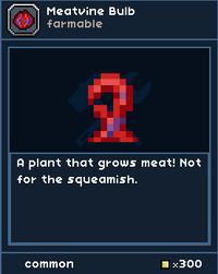 MeatvineBulbSeed