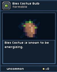 Blex Cactus Bulb