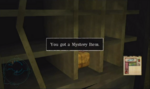 Mystery Item Hotel